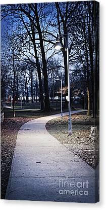 Park Path At Dusk Canvas Print by Elena Elisseeva
