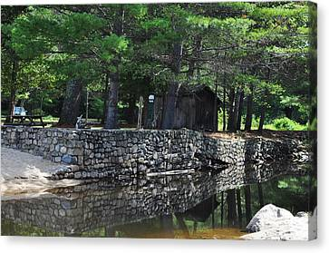 Pasquaney Creek Canvas Print by Vanessa Williams
