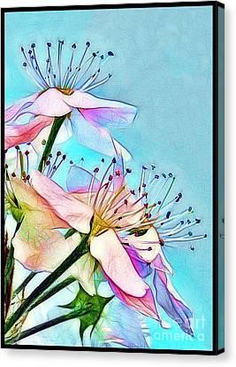 Pastel Petals Canvas Print by Judi Bagwell