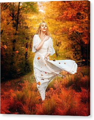 Path Of Fall Canvas Print by Mary Hood