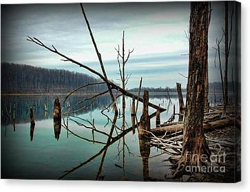 Path To Enlightment Canvas Print by Paul Ward
