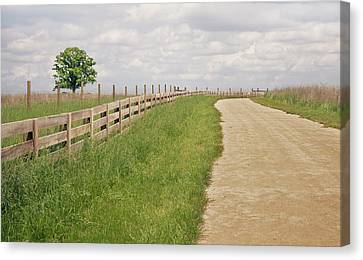 Pathway Surrounded By Wooden Fence Canvas Print by Kathryn Froilan