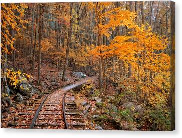 Peaceful Pathway Series 2 Canvas Print by Kathy Jennings