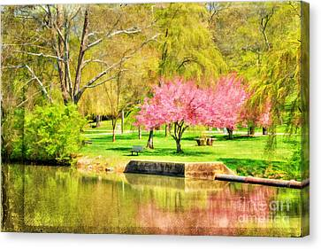 Peaceful Spring II Canvas Print by Darren Fisher
