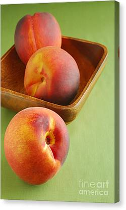 Peaches Canvas Print by HD Connelly