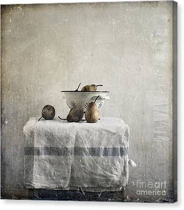 Pears Under Grunge Canvas Print by Paul Grand