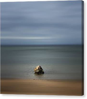 Pensive Canvas Print by Bob Retnauer