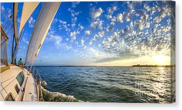 Perfect Evening Sailing On The Charleston Harbor Canvas Print by Dustin K Ryan