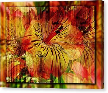 Petal Paradigm Canvas Print by Tim Allen
