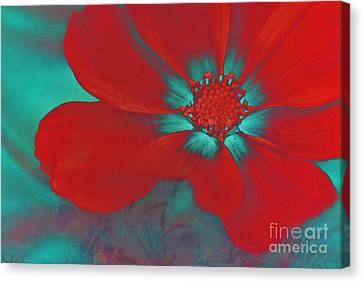 Petaline - T23b2 Canvas Print by Variance Collections