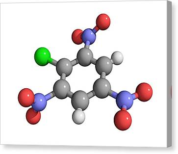 Picryl Chloride Explosive Molecule Canvas Print by Laguna Design