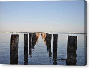 Pilings From An Old Pier Canvas Print by Bill Cannon