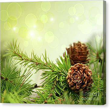 Pine Cones On Branches With Holiday Background Canvas Print by Sandra Cunningham