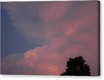 Pink And Blue Sky Canvas Print by LeeAnn McLaneGoetz McLaneGoetzStudioLLCcom