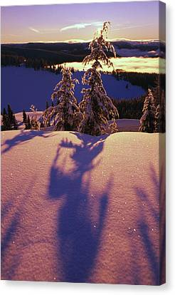 Pink And Purple Sunrise Shadows Of Snow Canvas Print by Natural Selection Craig Tuttle