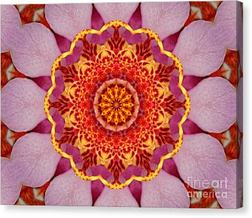 Pink Orchid Mandala-1 Canvas Print by Renata Ratajczyk