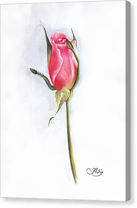 Pink Rose Canvas Print by Muna Abdurrahman
