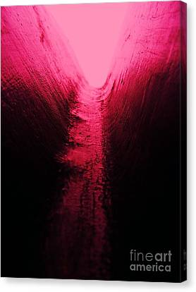 pink Valley Canvas Print by Trevor Fellows