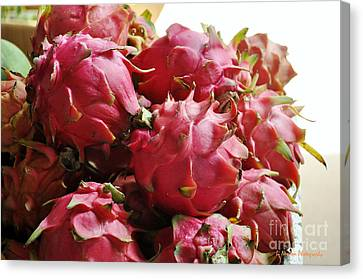 Pitaya- Dragon Fruit Canvas Print by Li Newton
