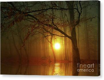 Place To Dream Canvas Print by Bruno Santoro