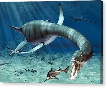 Plesiosaur Attack Canvas Print by Roger Harris and Photo Researchers