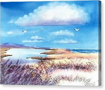 Pond At South Cape Beach Canvas Print by Joseph Gallant