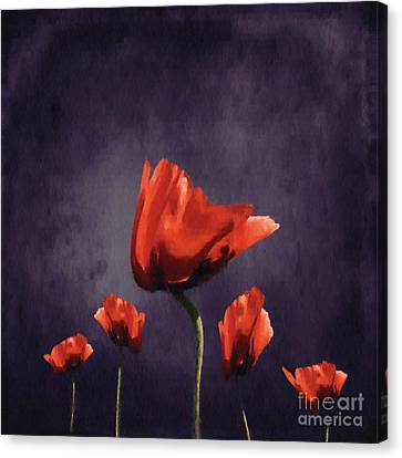 Poppies Fun 02b Canvas Print by Variance Collections