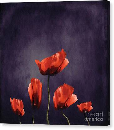 Poppies Fun 03b Canvas Print by Variance Collections