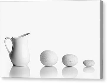 Porcelain Canvas Print by Todor Vassilev