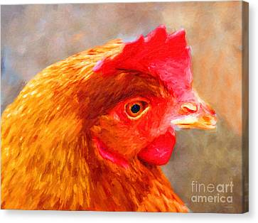 Portrait Of A Chicken Canvas Print by Wingsdomain Art and Photography