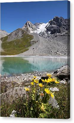 Postcard From Alpes Canvas Print by Mircea Costina Photography