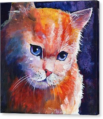 Pouting Kitty Canvas Print by Sherry Shipley