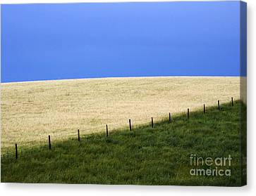 Prairie Horizon Canvas Print by Bob Christopher