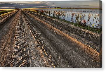 Prairie Road Storm Clouds Mud Tracks Canvas Print by Mark Duffy