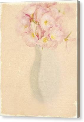Pretty Primroses Canvas Print by Linde Townsend