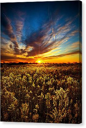 Proposal Canvas Print by Phil Koch