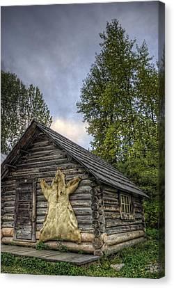 Prospector's Cabin Canvas Print by Wayne Stadler