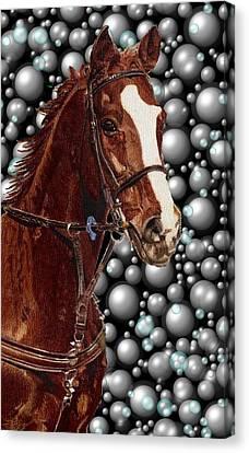 Proud With Bubbles Canvas Print by Patricia Barmatz
