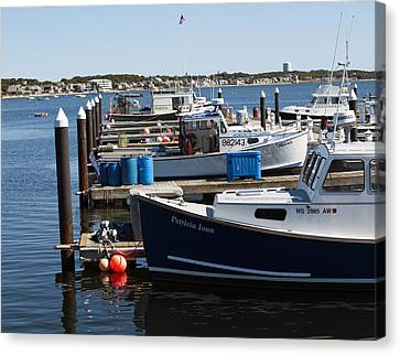 Provincetown Harbor Canvas Print by Daniela Kriva