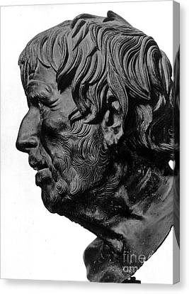 Pseudo-seneca Canvas Print by Granger