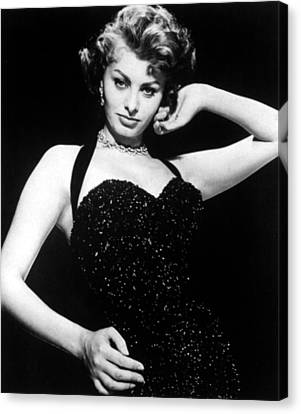 Publicity Shot Of Sophia Loren Taken Canvas Print by Everett