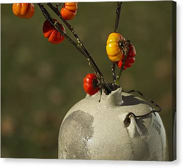 Pumpkin On A Stick In An Old Primitive Moonshine Jug Canvas Print by Kathy Clark