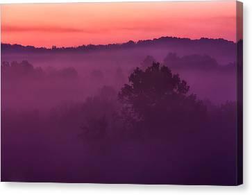 Purple Dawn Canvas Print by Matt  Trimble