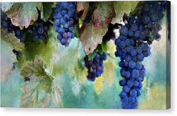 Purple Grapes Canvas Print by Susan Holsan
