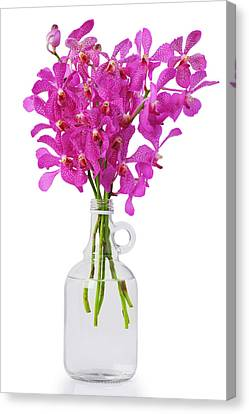 Purple Orchid In Bottle Canvas Print by Atiketta Sangasaeng