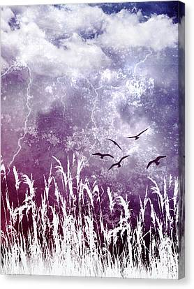 Purple Skies Canvas Print by Ellen Heaverlo