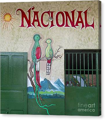 Quetzal Painting  Canvas Print by Heiko Koehrer-Wagner