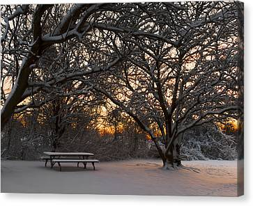 Quiet Moment Before Dawn Canvas Print by Yelena Rozov