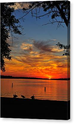 Quiet Morning Canvas Print by Rusty  Enderle