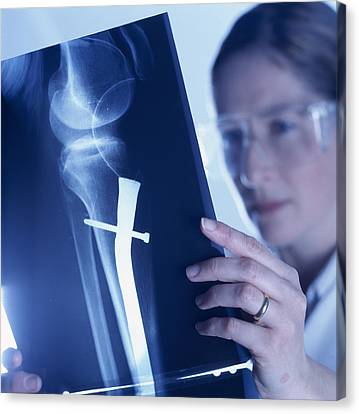 Radiologist Canvas Print by Tek Image